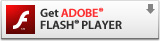 Download Adobe Flash